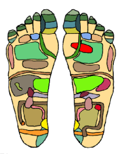Foot_Chart
